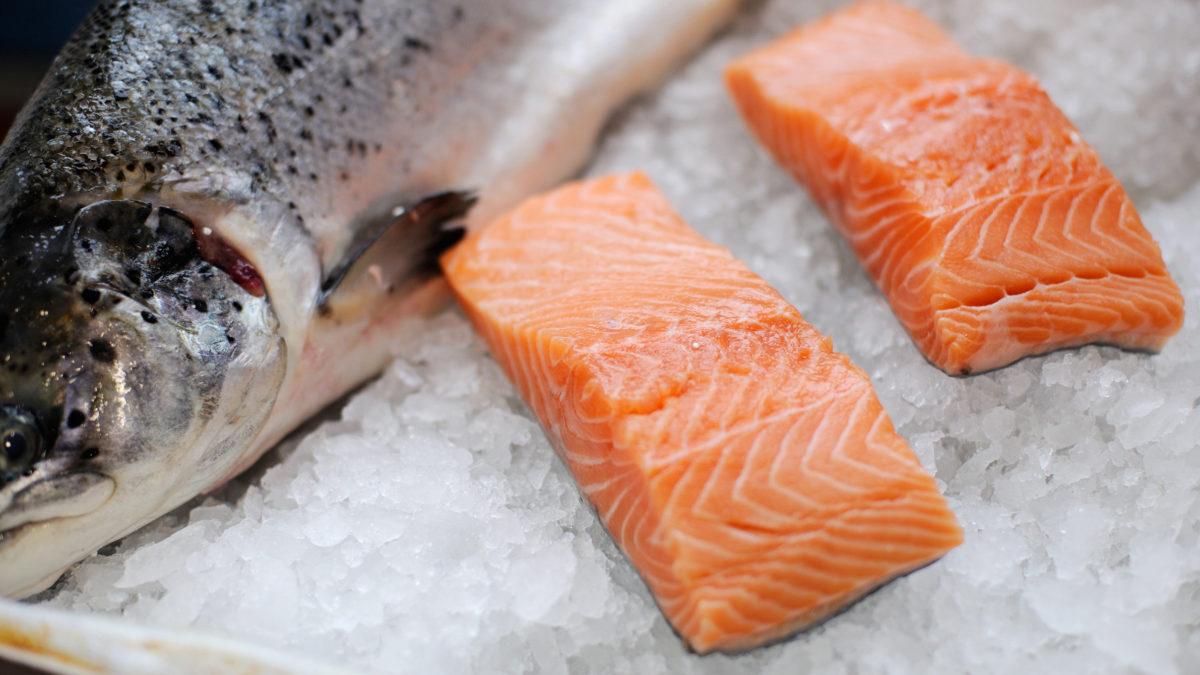 Salmon or sprat?