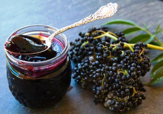 Black elder – the extract of the elderberry fruit acts generally strengthening the body