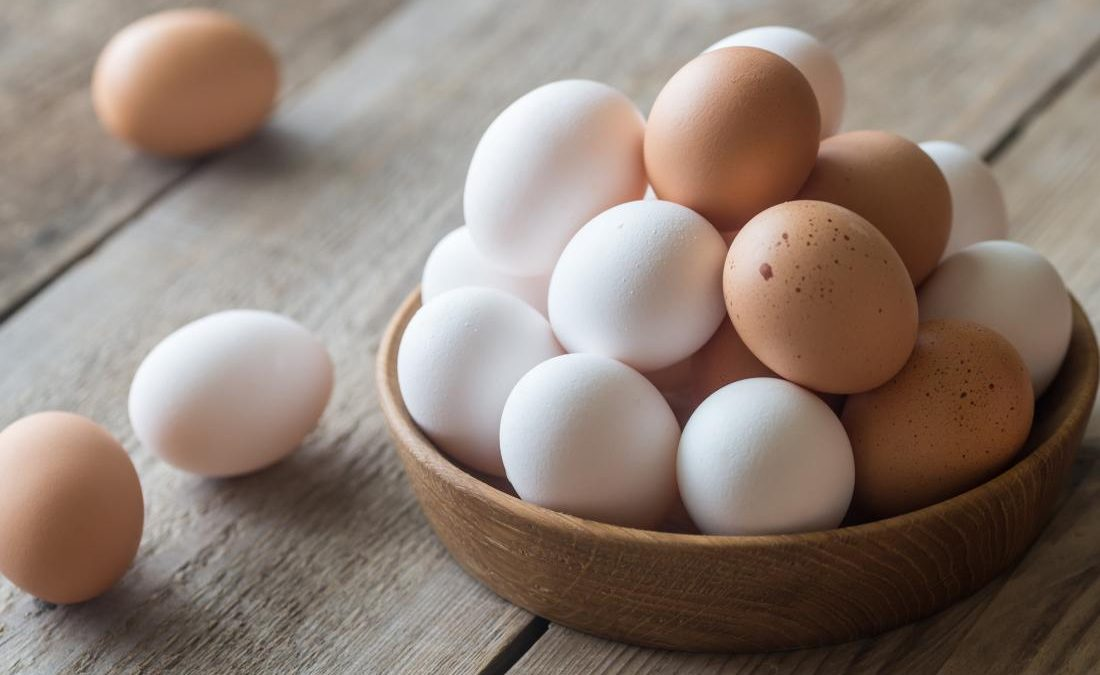 Are fertilized eggs more useful?