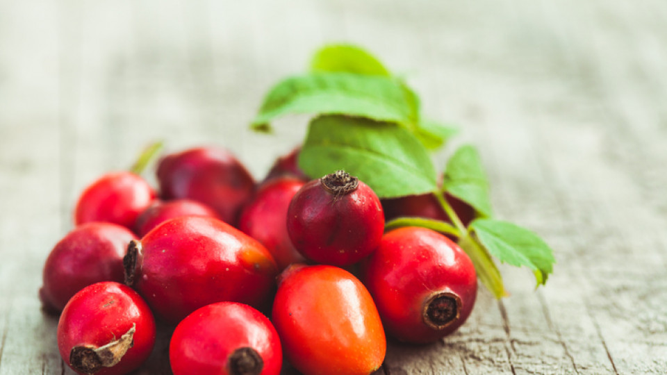 Does the rose hip jam reduce appetite?