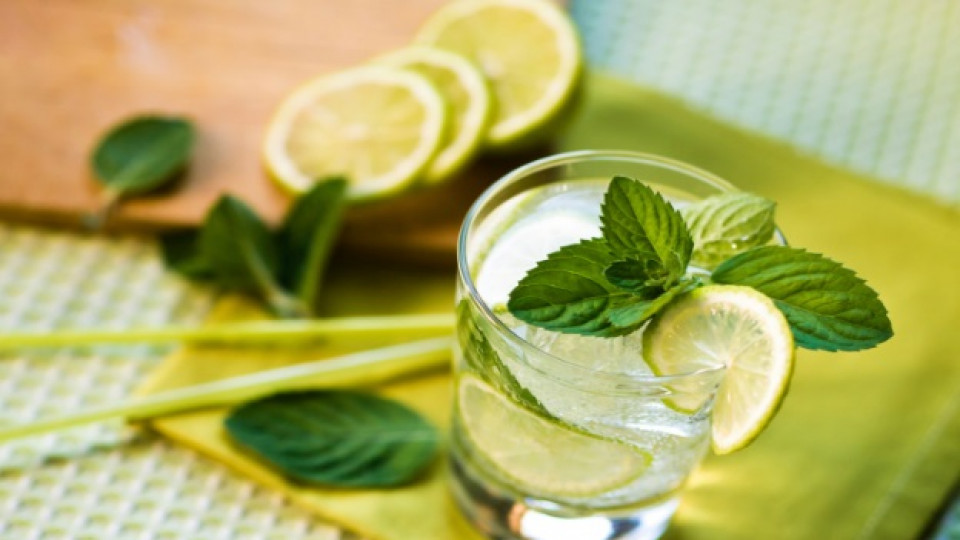 Water with lemon and peppermint or home-made lemonade …